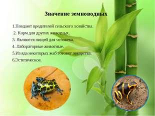 * Значение земноводных 1.Поедают вредителей сельского хозяйства. 2. Корм для