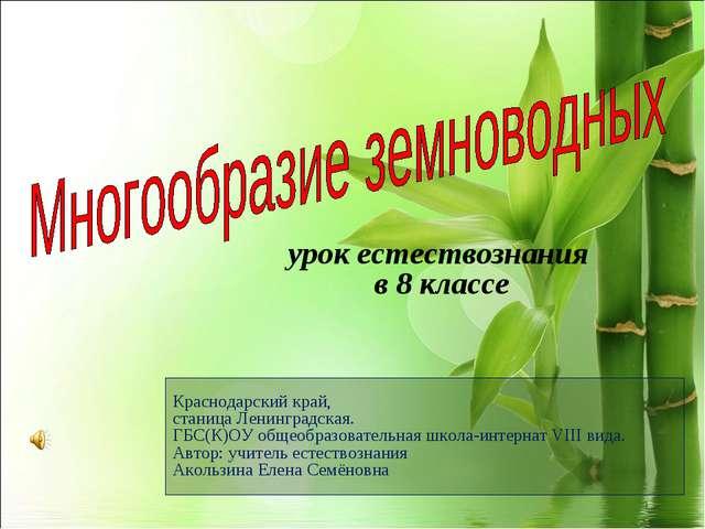 Краснодарский край, станица Ленинградская. ГБС(К)ОУ общеобразовательная школа...