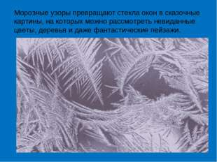 Морозные узоры превращают стекла окон в сказочные картины, на которых можно р