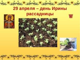 29 апреля – день Ирины рассадницы