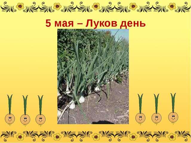 5 мая – Луков день