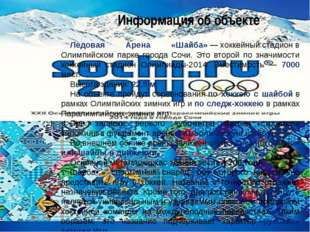 Малая ледовая арена «Шайба» фотографии арены «Шайба» Информация об объекте на