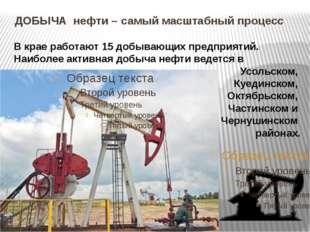 ДОБЫЧА нефти – самый масштабный процесс В крае работают 15 добывающих предпр