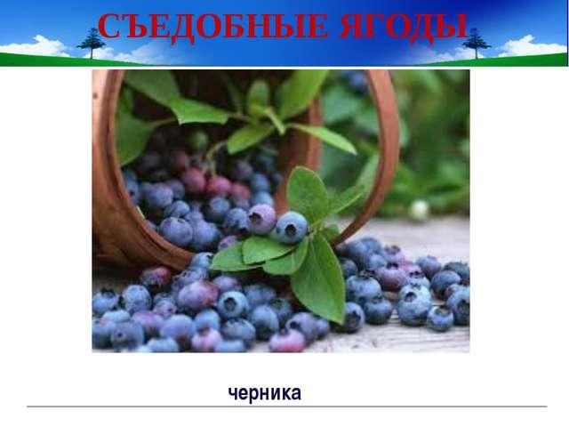 Изучение нового материала Работа по учебнику с.139 Непорада Наталия Евгеньевна