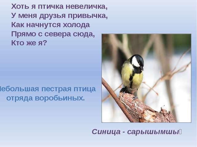 Хоть я птичка невеличка, У меня друзья привычка, Как начнутся холода Прямо с...