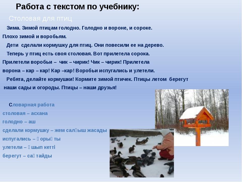 Работа с текстом по учебнику: Столовая для птиц Зима. Зимой птицам голодн...