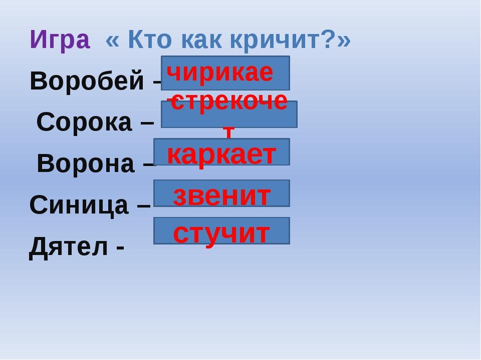 Игра « Кто как кричит?» Воробей – Сорока – Ворона – Синица – Дятел - чирикает...
