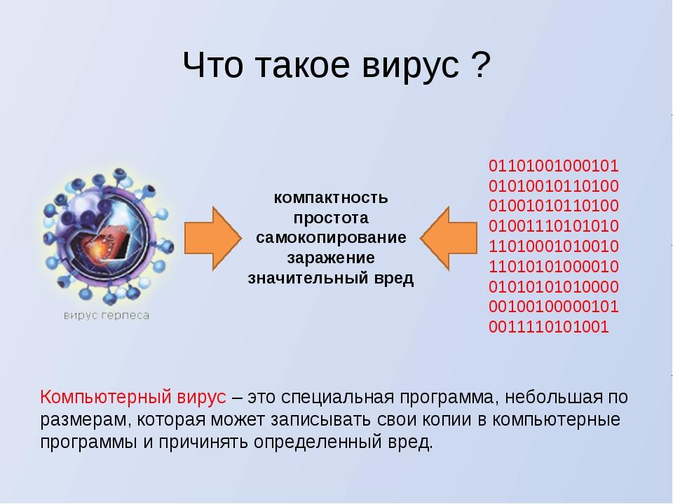 Что такое вирус ? Компьютерный вирус – это специальная программа, небольшая п...