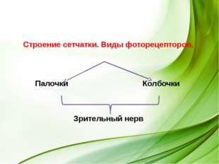 Состав зрительного анализатора Сетчатка Зрительные нервы Зрительная зона кор