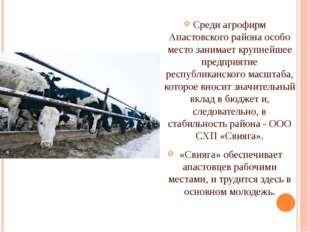Среди агрофирм Апастовского района особо место занимает крупнейшее предприят