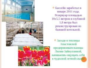 Бассейн заработал в январе 2011 года. Резервуар площадью 18х5,5 метров и глу