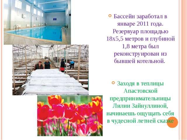 Бассейн заработал в январе 2011 года. Резервуар площадью 18х5,5 метров и глу...