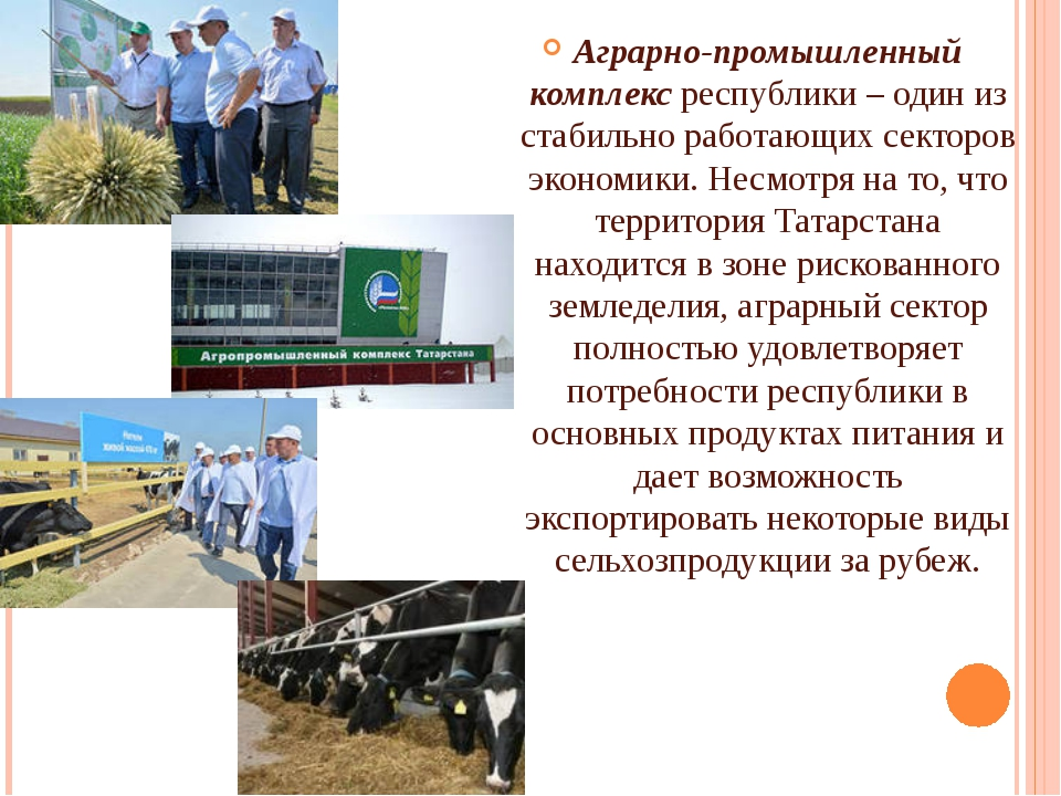 Аграрно-промышленный комплексреспублики – один из стабильно работающих сект...
