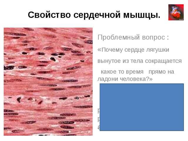 Свойство сердечной мышцы. Проблемный вопрос : «Почему сердце лягушки вынутое...