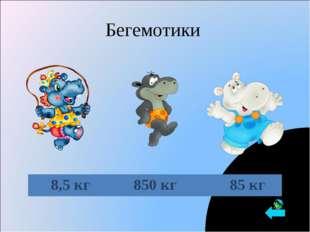 Бегемотики 8,5 кг850 кг 85 кг