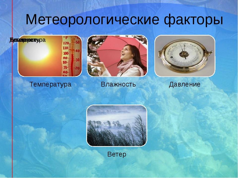 Метеорологические факторы