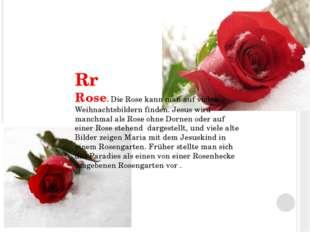 Rr Rose. Die Rose kann man auf vielen Weihnachtsbildern finden. Jesus wird ma
