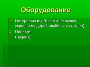Оборудование Натуральные объекты(петрушка, укроп, сельдерей, имбирь, лук, хре