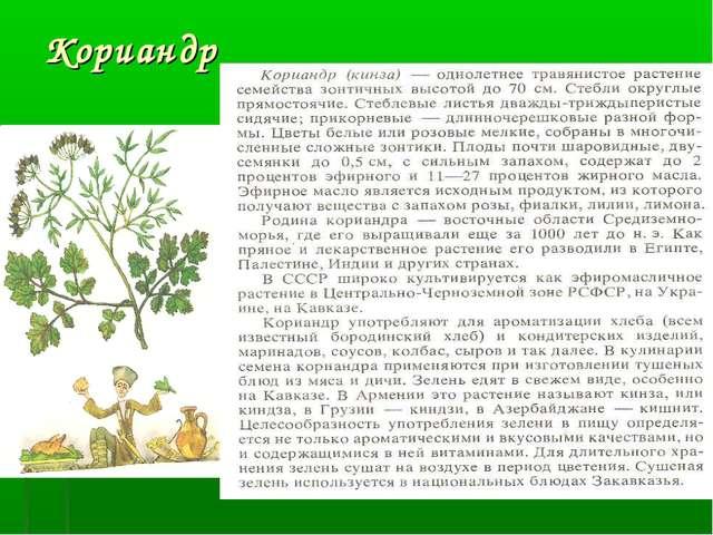 Кориандр