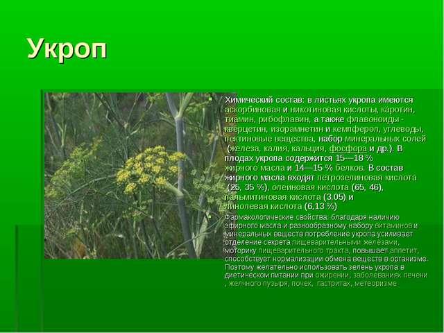 Укроп Химический состав: в листьях укропа имеютсяаскорбиноваяиникотиновая...