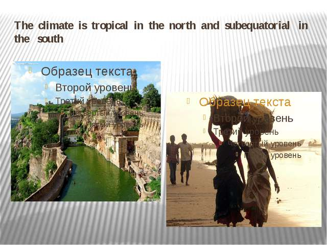 The climate is tropical in the north and subequatorial in the south