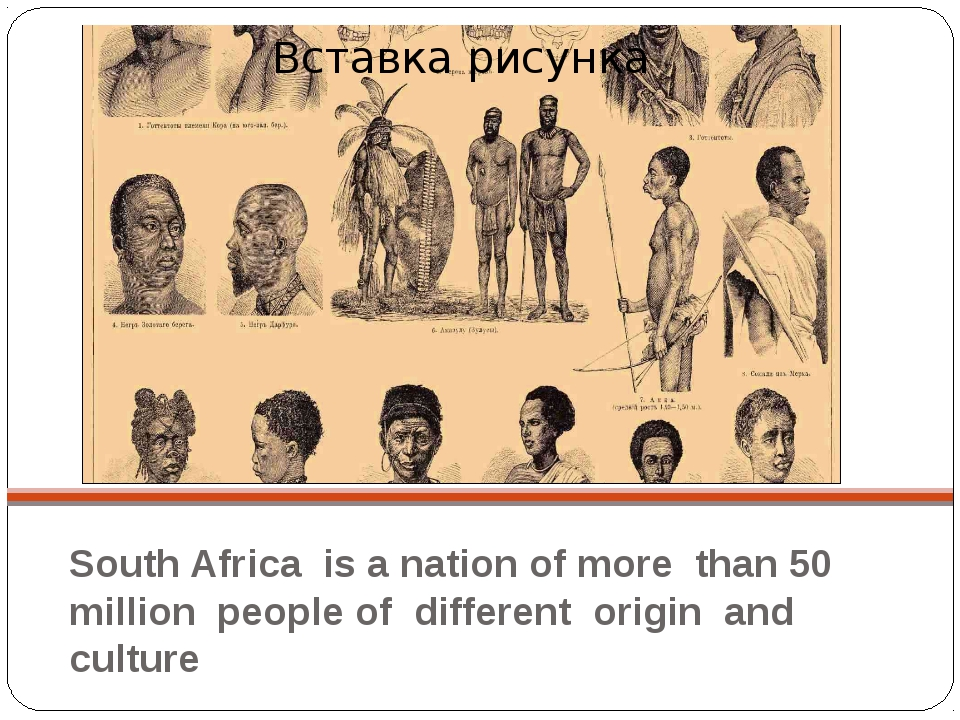 South Africa is a nation of more than 50 million people of different origin a...