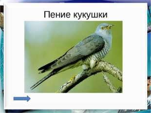 Пение кукушки http://aida.ucoz.ru