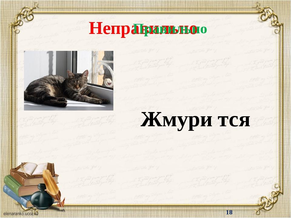 http://s3.uploads.ru/BdO9t.png рамка http://cs10561.vkontakte.ru/u111299510/-...