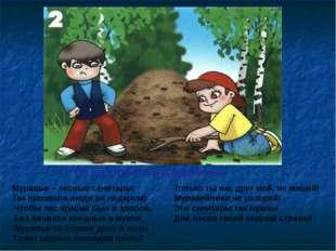 Не разоряйте муравейники Муравьи – лесные санитары; Так прозвали люди их неда