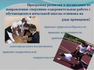 Программа развития и воспитания по направлению спортивно-оздоровительная ра