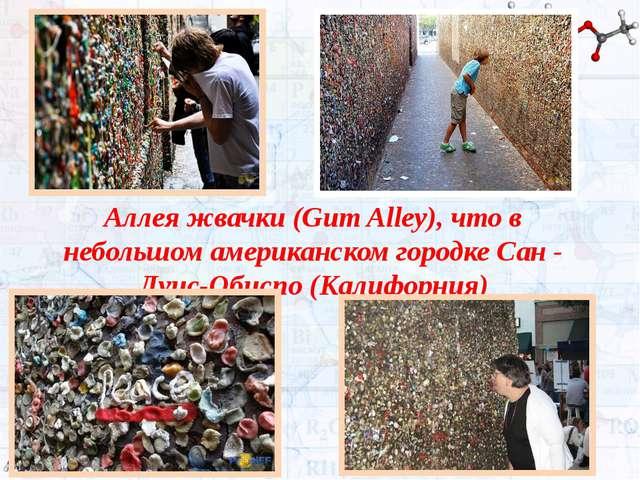 Аллеяжвачки(Gum Alley), что в небольшом американском городке Сан - Луис-Оби...