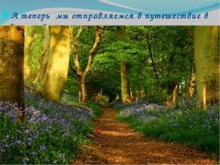 А теперь мы отправляемся в путешествие в весенний лес.