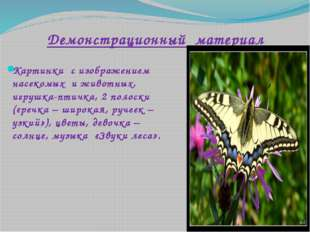 Демонстрационный материал Картинки с изображением насекомых и животных, игруш