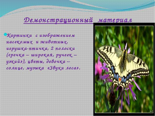 Демонстрационный материал Картинки с изображением насекомых и животных, игруш...