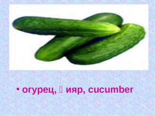 Без окон, без дверей, полна горница людей огурец, қияр, cucumber