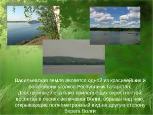Васильевская земля является одной из красивейших и богатейших уголков Республ