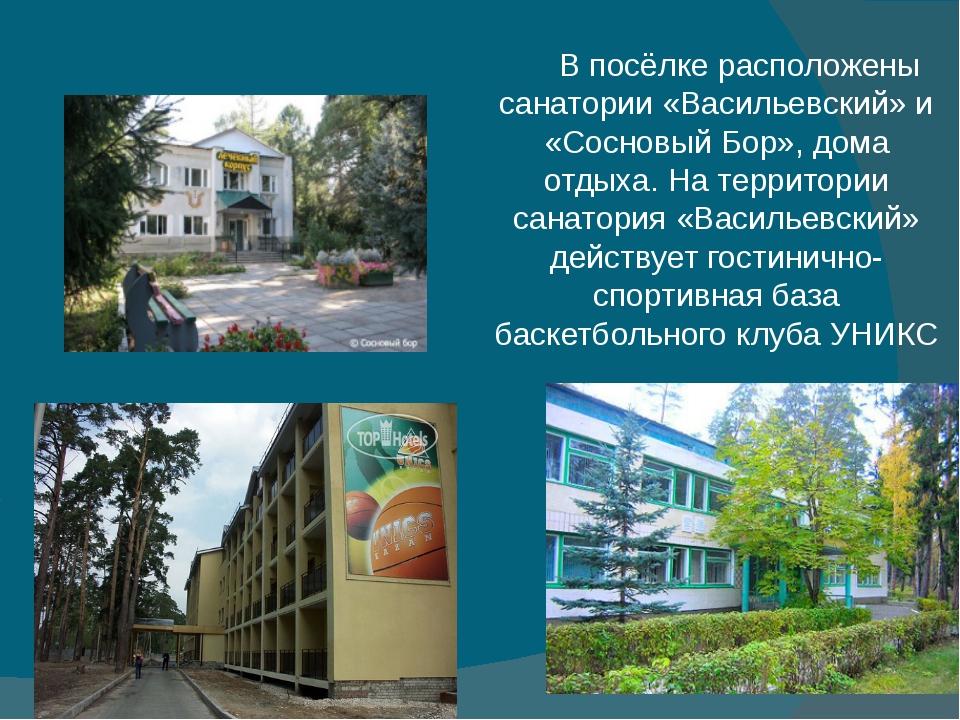 В посёлке расположены санатории «Васильевский» и «Сосновый Бор», дома отдыха....