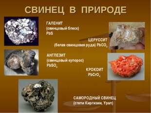 СВИНЕЦ В ПРИРОДЕ ГАЛЕНИТ (свинцовый блеск) PbS ЦЕРУССИТ (белая свинцовая руда