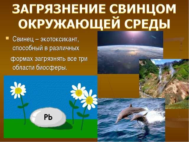 Свинец – экотоксикант, способный в различных формах загрязнять все три област...