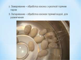 2. Замаривание – обработка кокона с куколкой горячим паром 3. Запаривание – о