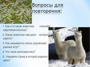 1. Как и от каких животных получают шерстяные волокна? 2. Какие животные нам
