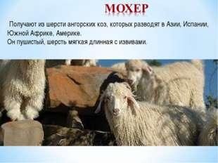 Получают из шерсти ангорских коз, которых разводят в Азии, Испании, Южной Аф