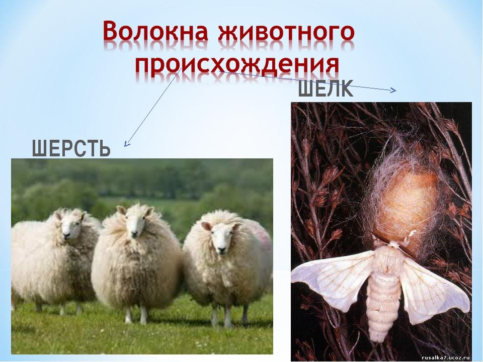 ШЕЛК ШЕРСТЬ