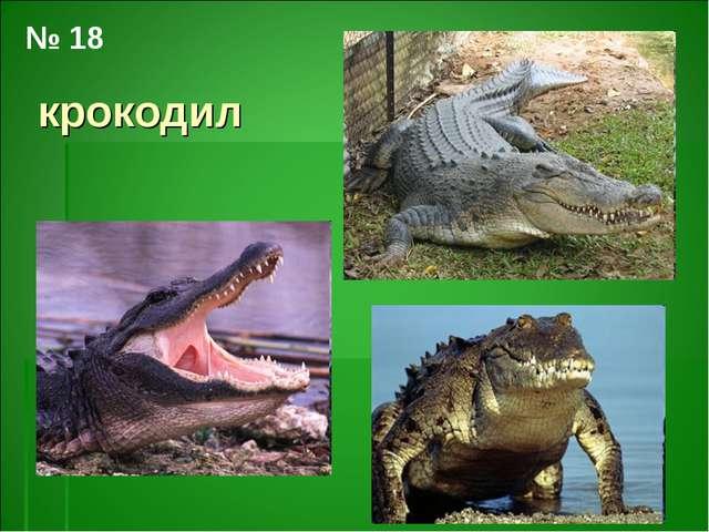 крокодил № 18