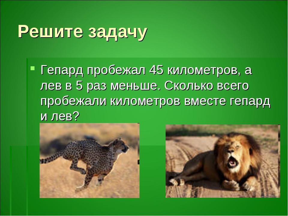 Решите задачу Гепард пробежал 45 километров, а лев в 5 раз меньше. Сколько вс...