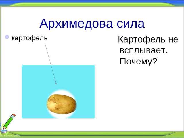 Архимедова сила Картофель не всплывает. Почему? картофель