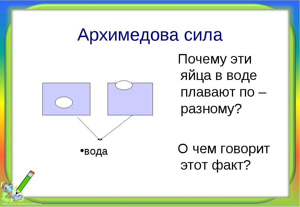 Архимедова сила Почему эти яйца в воде плавают по – разному? О чем говорит эт...