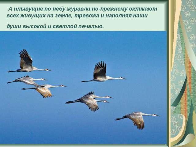 А плывущие по небу журавли по-прежнему окликают всех живущих на земле, трево...