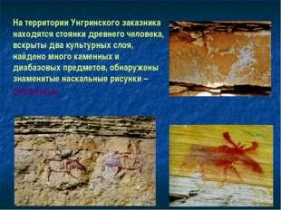 На территории Унгринского заказника находятся стоянки древнего человека, вскр