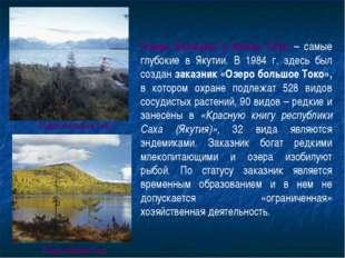 Озера Большое и Малое Токо – самые глубокие в Якутии. В 1984 г. здесь был соз